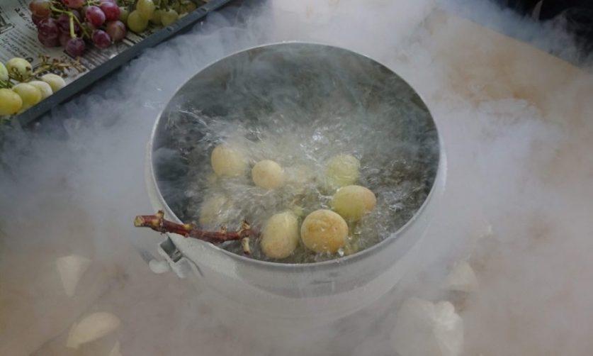 画像: 液体窒素凍結4